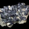 Galenit xx  Joplin, Tri State district, Missouri, USA