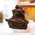 fossilies Holz, Tagebau Espenhain