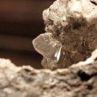 Whewellit - ein organisches Mineral -es kann auch im Menschen entstehen: als Nierenstein